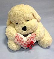Собака, 44х54 см, велюр/плюш, Подарки, Днепропетровск, фото 1