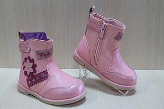Розовые демисезонные сапожки на девочку тм Том.м р.22, фото 3