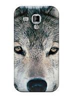 Чехол Samsung S Duos GT-S7562 - Волк