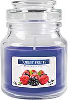 Ароматические свечи BISPOL Лесные ягоды