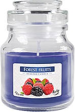 Ароматичні свічки BISPOL Лісові ягоди