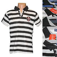 Мужская котоновая футболка AD1m (в уп. до 5 разных расцветок) оптом со склада в Одессе