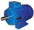 Электродвигатель АИР 63 В2  (0.55 кВт х 3000) 3ф
