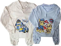 Детская пижама для мальчиков, 26-34, Украина, оптом