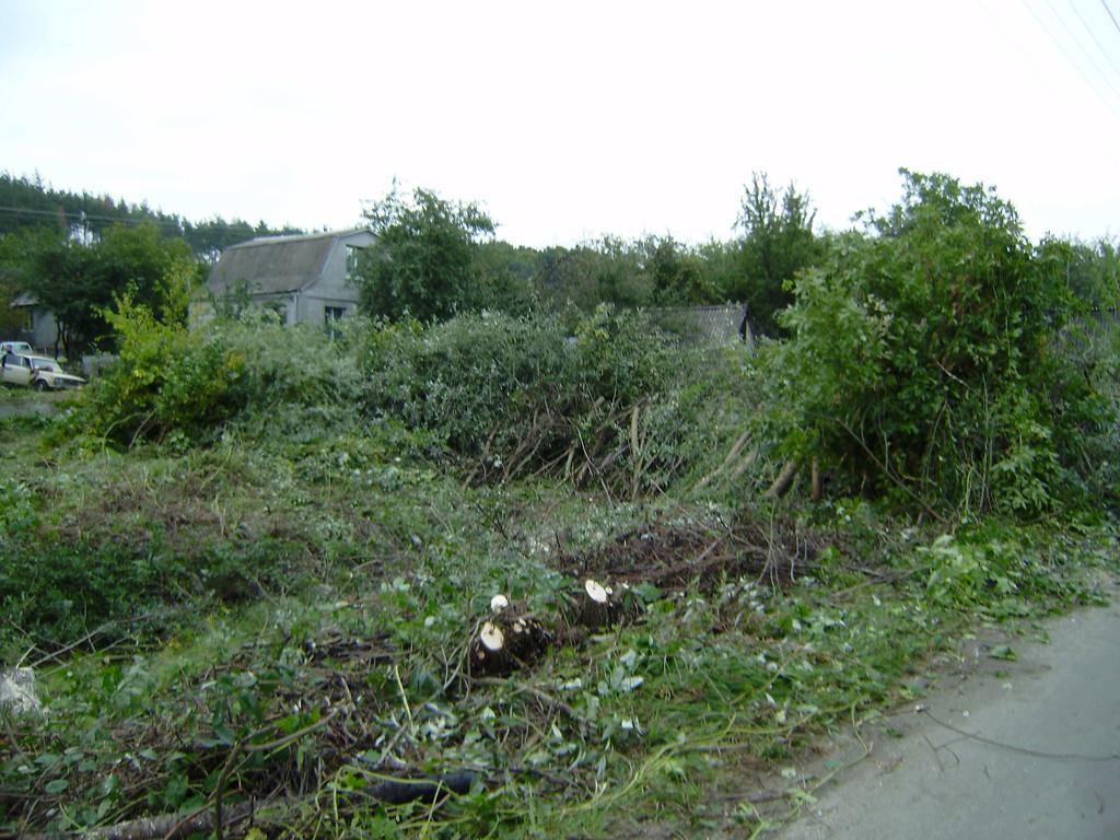 Удаление деревьев на участке
