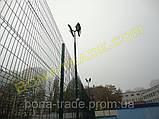 Панельная заборная сетка для дачи, фото 4