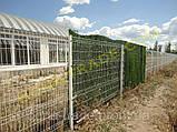Панельная заборная сетка для дачи, фото 3