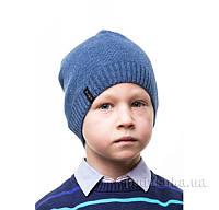 Шапка для мальчика Аlex Д253 48-52