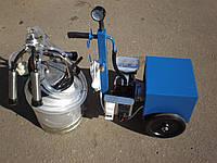 Доильный аппарат АИД-1Р Нерж (масляный), фото 1