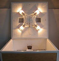 Инкубатор Курочка Ряба ИБ-140 цифровой с механическим переворотом ламповый DI