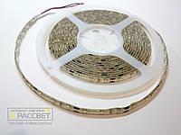 Светодиодная лента Magicled Премиум 3528 60 LED/m 4,8W/m IP54