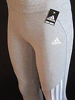 Женские спортивные штаны в обтяжку.