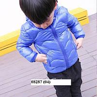 Весенняя курточка детская 08287 (04)