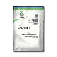 Семена огурца Амур F1 (Бейо / Bejo) 1000 семян - партенокарпик, ультра-ранний гибрид (40-45 дней)