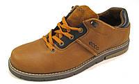 Туфли мужские ECCO кожаные, рыжие (еко)(р.41)