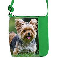Зеленая сумка для девочки с рисунком Йоркширский терьер