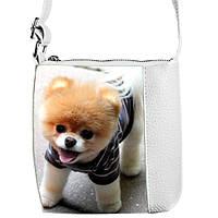 Детская сумочка для девочки Little Princess с принтом Шпиц