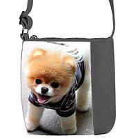 Детская сумка для девочки с рисунком Собачка Шпиц