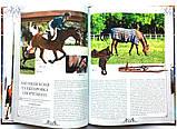 Коні. Ілюстрована енциклопедія, фото 5