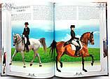Коні. Ілюстрована енциклопедія, фото 6