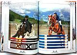 Коні. Ілюстрована енциклопедія, фото 7