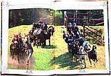 Коні. Ілюстрована енциклопедія, фото 9