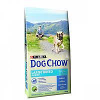 Dog Chow Puppy Large Breed корм для щенков крупных пород с индейкой 14 кг