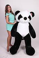 Большая мягкая плюшевая игрушка Панда. 200 см