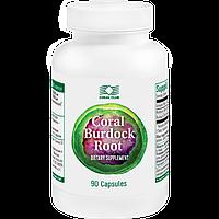 """""""Корал Бурдок Рут"""" - продукт для улучшений пищеварения, лечения заболеваний желудка, печени и желчного пузыря."""