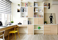 Корпусная мебель – антикризисная программа