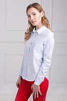 Рубашка в мелкую вертикальную полоску голубого цвета из коттона