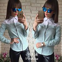 Рубашка женская в полоску (4 расцветки),модная женская одежда