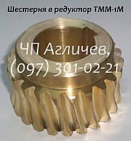 Шестерня в малый редуктор тестомеса ТММ-1М, шестерня на тестомес бронзовая