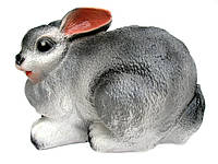 Заяц лежит большой серый
