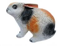 Заяц сидит большой