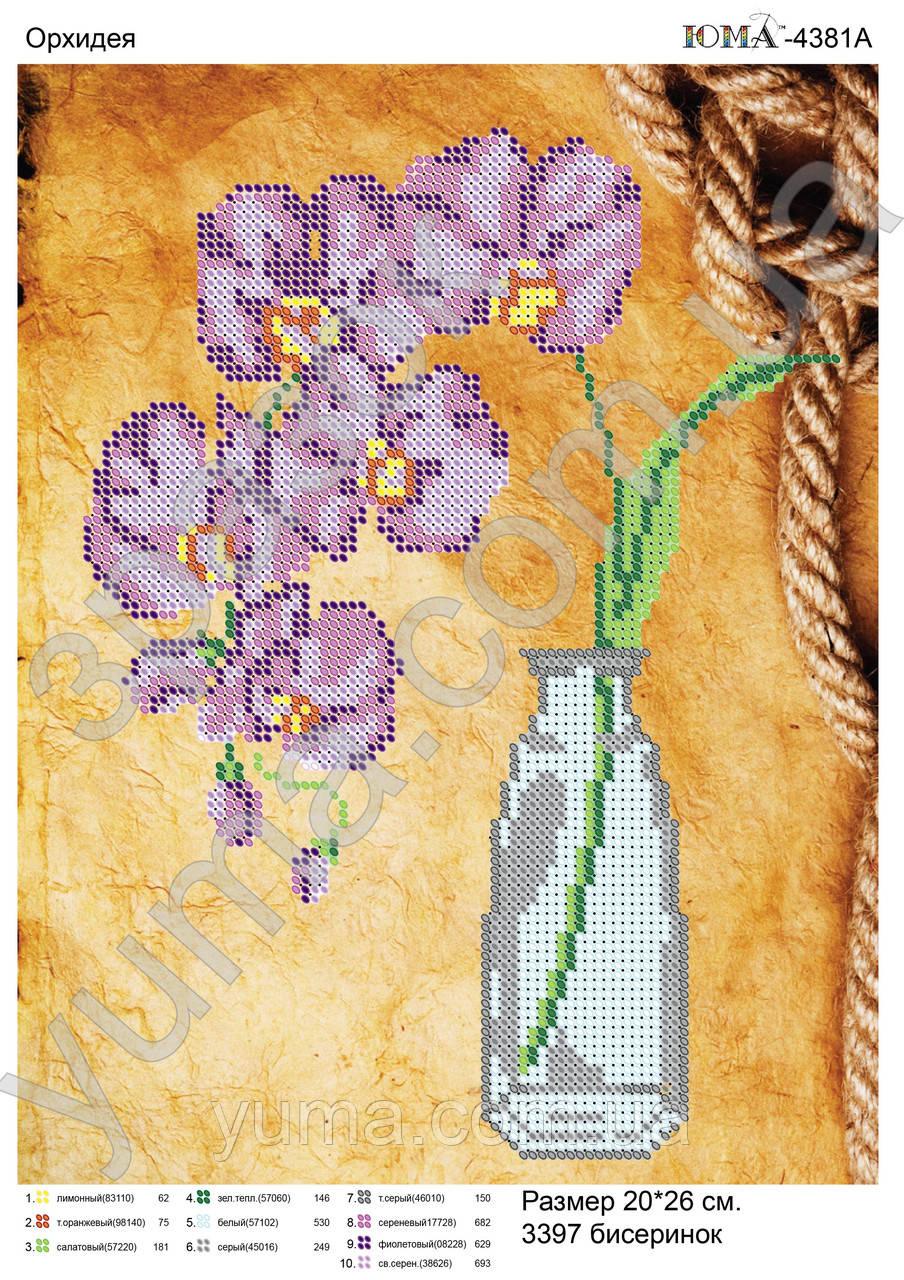 """Схема для вышивки бисером """"Фиолетовая орхидея"""""""
