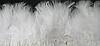Перьевая тесьма из перьев лебедя.Цвет белый.Цена за 0,5м