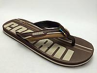 Мужские вьетнамки Gambol(Sahab) коричневые
