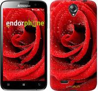 """Чехол на Lenovo A850 Красная роза """"529c-79"""""""