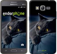 """Чехол на Samsung Galaxy Grand Prime VE G531H Дымчатый кот """"825c-212"""""""