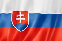 Словакия флаг Вафельная картинка