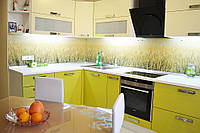 Кухня Original Лайм из пленочного МДФ, фото 1