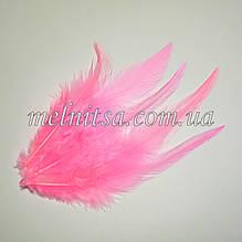 """Перья  """"под фазана"""", цвет нежно-розовый,  10-15 см"""