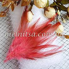 """Перья  """"под фазана"""", розовые,  10-15 см"""