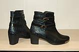 Ботинки кожаные 36-41 р Paolla., фото 4
