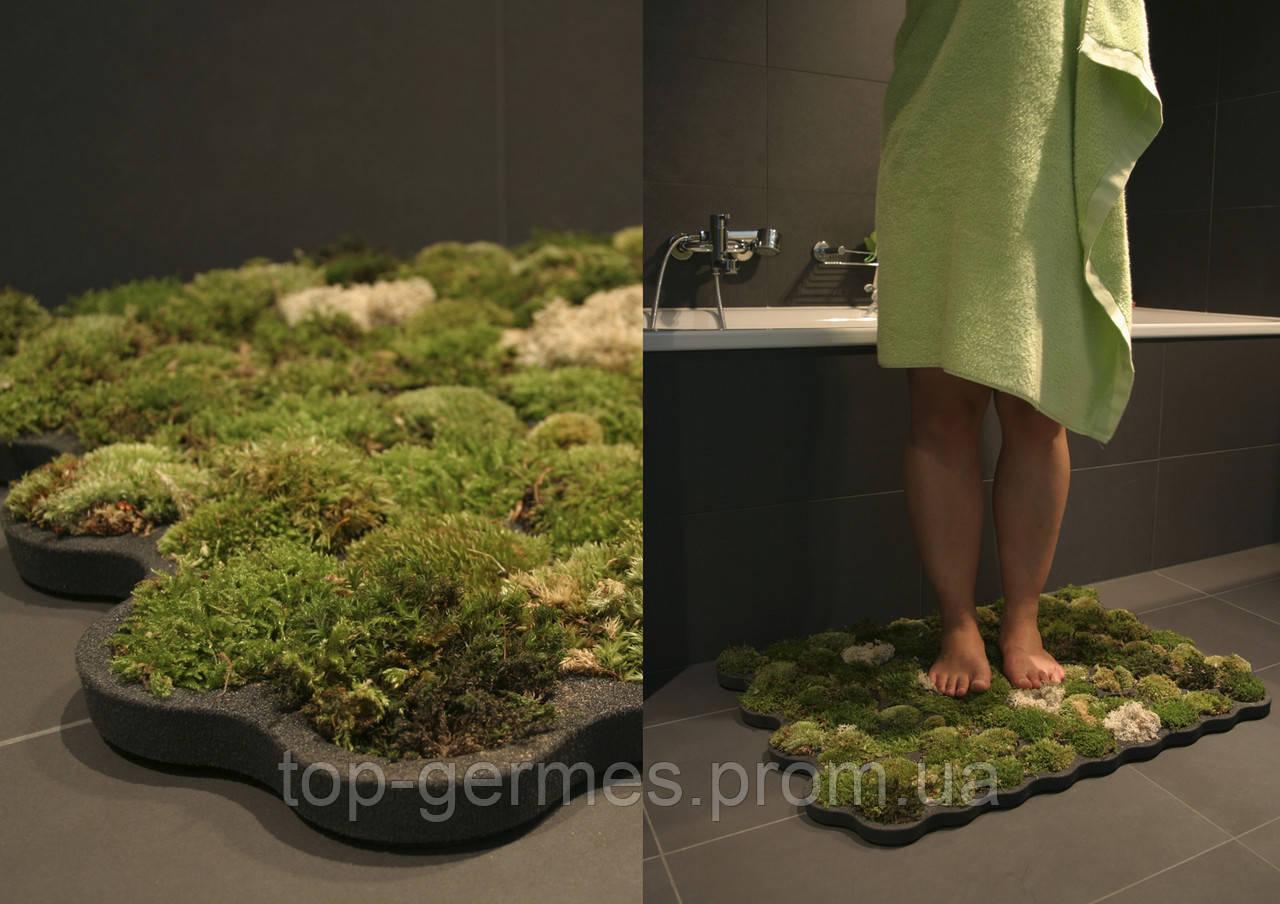 Натуральный мох для декора 0,500г