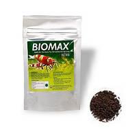 Genchem Biomax 3, основной корм для взрослых креветок, стимулирует размножение и увеличение количества икры