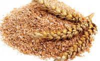 Пшеничные отруби являются хорошим кормом для всех видов животных