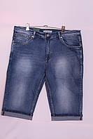 Мужские джинсовые шорты больших размеров Super Filip (код 2116-114)