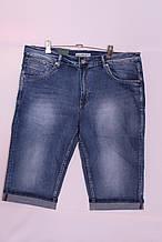 Чоловічі джинсові шорти великих розмірів Super Filip (код 2116-114)